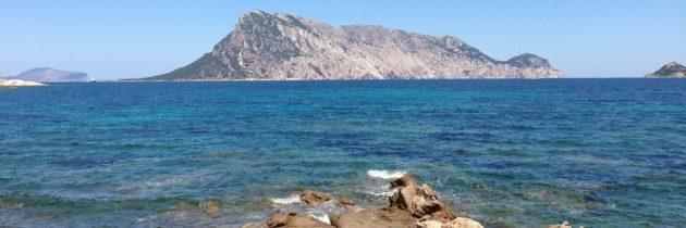 L'ile de Sardaigne, zone de la longévité et de la santé
