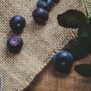 La myrtille : un fruit bénéfique pour la santé